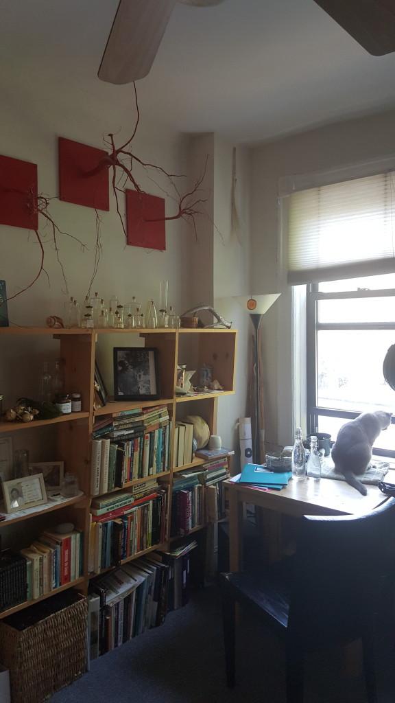 Sham's living room